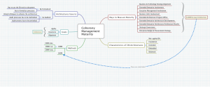 Coherency Maturity MindMap